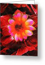 Reds And Pinks Collage Greeting Card by Anne-Elizabeth Whiteway