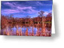 Reeds Greeting Card by Paul Ward