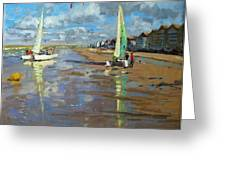 Reflection Greeting Card by Andrew Macara