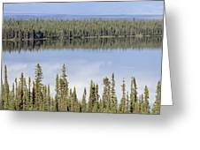 Reflection In Willow Lake Near Copper Greeting Card by Rich Reid