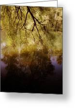 Reflection Greeting Card by Joana Kruse