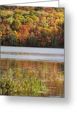 Reflection Of Autumn Colors In A Lake Greeting Card by Susan Dykstra