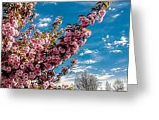 Refreshing Greeting Card by Robert Bales