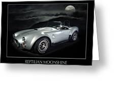 Reptilian Moonshine Greeting Card by Robert Twine