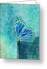 Reve De Papillon - S02a2 Greeting Card by Variance Collections