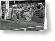 Ride 'em Cowboy Greeting Card by Shawn Naranjo
