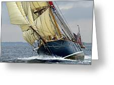 Riding The Wind Greeting Card by Robert Lacy