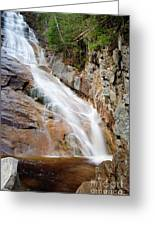 Ripley Falls - Crawford Notch State Park New Hampshire Usa Greeting Card by Erin Paul Donovan