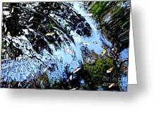 Ripples And Reflections Greeting Card by Theresa Willingham