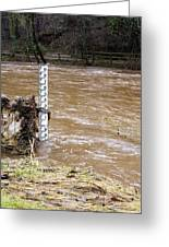 Rising River Level Greeting Card by Mark Williamson
