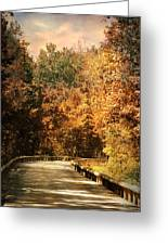 Road To Paradise Greeting Card by Jai Johnson