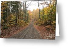 Roads Less Traveled Greeting Card by Catherine Reusch  Daley