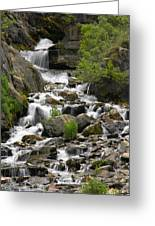 Roadside Mountain Stream Greeting Card by Mike McGlothlen