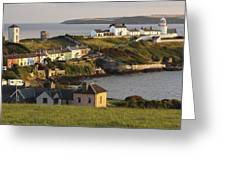 Roches Point Lighthouse In Cork Harbour Greeting Card by Trish Punch