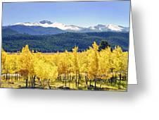 Rocky Mountain Park Colorado Greeting Card by James Steele