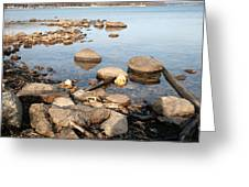 Rocky Shore Greeting Card by Merv Scoble