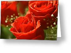 Romance Greeting Card by Cheryl Young