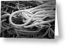 Ropes Greeting Card by Eric Gendron