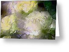 Rose 151 Greeting Card by Pamela Cooper
