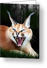 Rose Greeting Card by Big Cat Rescue