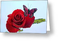 Rose Red Butterfly Isolated On Blue Greeting Card by M K  Miller