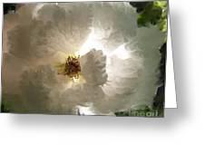 Rose Vaporeuse Greeting Card by Sylvie Leandre