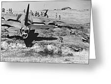 Rough Landing 1943 Greeting Card by Padre Art