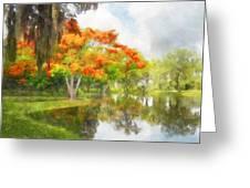 Royal Poinciana Lake Greeting Card by Francesa Miller