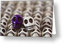 Royal Purple And White Greeting Card by Mike Herdering
