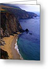 Rugged Shoreline Greeting Card by Ron Regalado