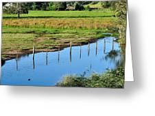 Rural Landscape after Rain Greeting Card by Kaye Menner