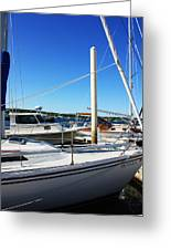 Sailboats Greeting Card by Becca Brann
