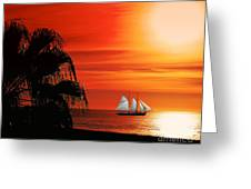 Sailing In Mexico Greeting Card by Billie-Jo Miller