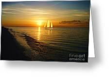 Sailing Greeting Card by Jeff Breiman