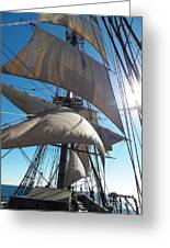 Sails And Sunshine Greeting Card by L Jaye Bell