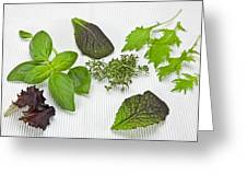 Salad Greens And Spices Greeting Card by Joana Kruse
