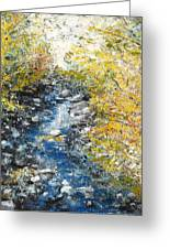 Salmon River Greeting Card by Andria Alex