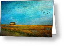 Salt Marsh Greeting Card by Michael Petrizzo