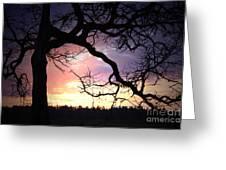 Samhain Greeting Card by C E Dyer