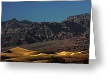 Sand Dunes - Death Valley's Gold Greeting Card by Christine Till