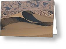 Sand Dunes In Death Valley Greeting Card by Marc Moritsch