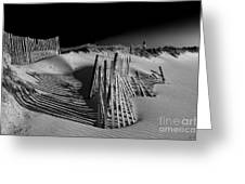 Sand Fence Greeting Card by Jim Dohms