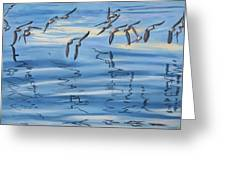 Sand Pipers Greeting Card by James Geddes