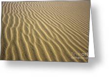 Sandhills Greeting Card by MotHaiBaPhoto Prints