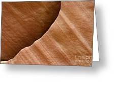 Sandstone Detail Greeting Card by Bob Christopher