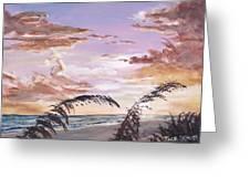 Sanibel Island Sunset Greeting Card by Jack Skinner
