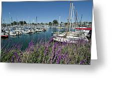 Santa Cruz Harbor - California Greeting Card by Brendan Reals