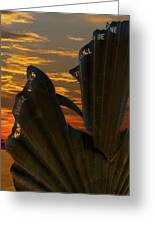 Scallop Sunrise Greeting Card by Darren Burroughs
