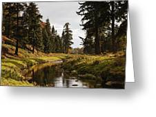 Scenic River, Northumberland, England Greeting Card by John Short
