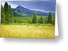 Scenic View In Canadian Rockies Greeting Card by Elena Elisseeva